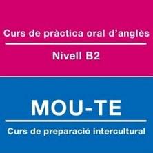 Cursos de preparació cultural i lingüística