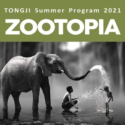 taller internacional online | ZOOTOPIA