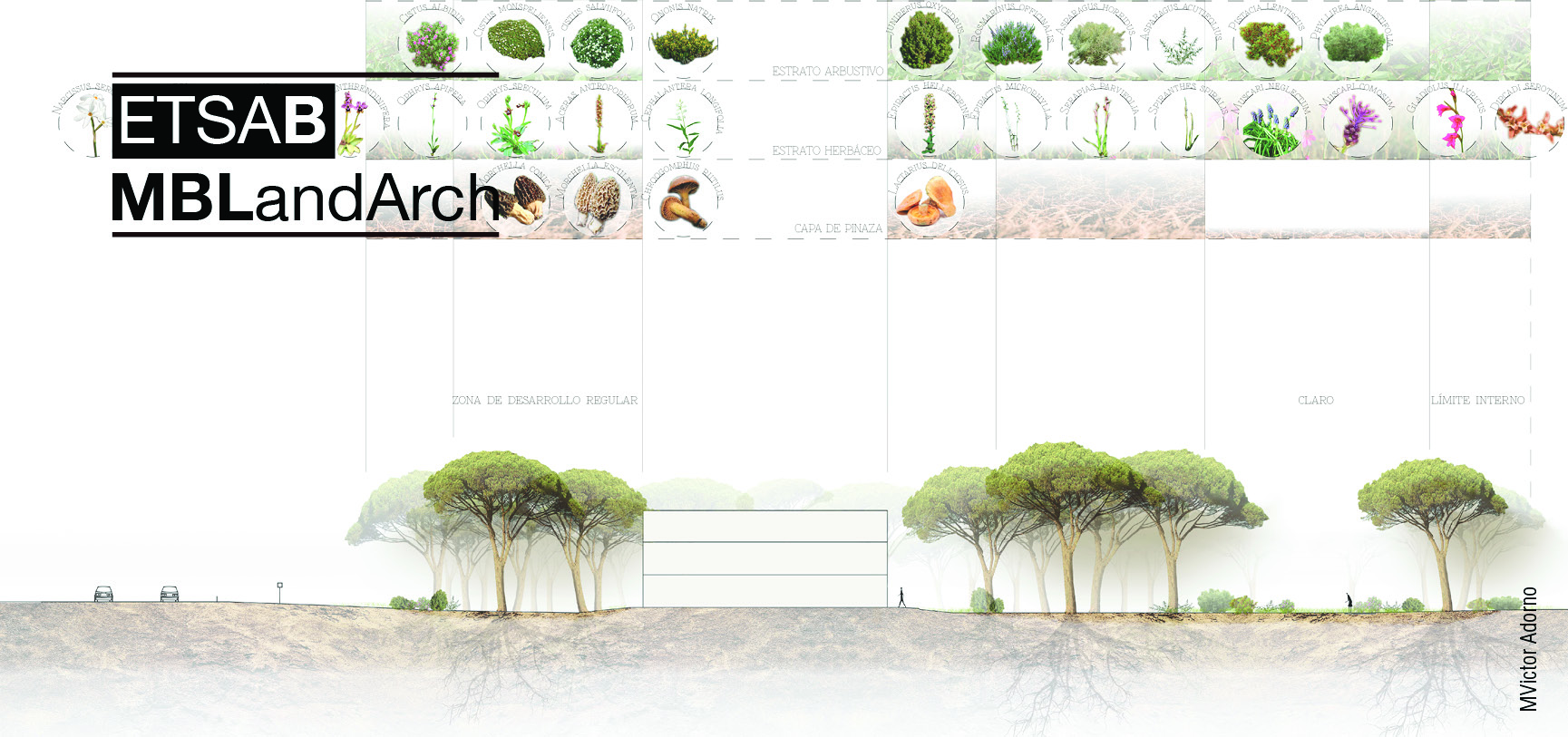 banners_MBLandArch10.jpg